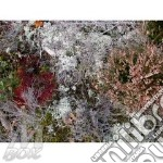 MYCORRHIGAE REALM                         cd musicale di FURSAXA