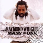 MANY AS ONE                               cd musicale di WRIGHT RAYMOND