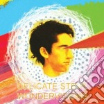 Wondervisions cd musicale di Steve Delicate