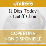 CAITIFF CHOIR cd musicale di IT DIES TODAY