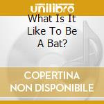 WHAT IS IT LIKE TO BE A BAT?              cd musicale di BRAZELTON/NAPHTALI
