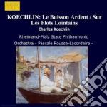 Au loin op.20 (pezzo sinfonico), sur les cd musicale di Koechlin