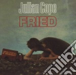FRIED cd musicale di Julian Cope