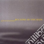 Because of the rain cd musicale di James Wilkinson