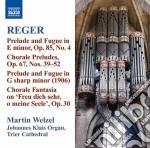 OPERE PER ORGANO (INTEGRALE), VOL.10      cd musicale di Max Reger
