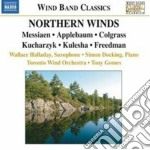 NORTHERN WINDS                            cd musicale di ARTISTI VARI
