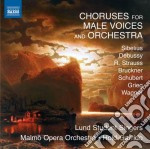 Cori per voci maschili e orchestra cd musicale di Miscellanee