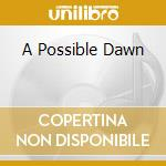 A POSSIBLE DAWN                           cd musicale di LOREN MAZZACANE CONN