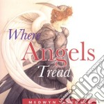 Where angels tread cd musicale di Medwyn Goodall