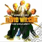 Rockin' the boogie cd musicale di David k wilcox