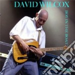 Boy in the boat cd musicale di David Wilcox
