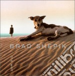 The well - cd musicale di Shepik Brad