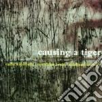 Causing a tiger cd musicale di Kihlstedt/matt Carla