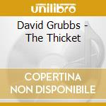 CD - DAVID GRUBBS - THICKET cd musicale di DAVID GRUBBS