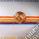 (LP VINILE) A wonder working stone lp vinile di Alasdair roberts & f