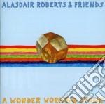A wonder working stone cd musicale di Alasdair roberts & f