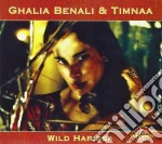 Wild harissa cd musicale di Galia Benali