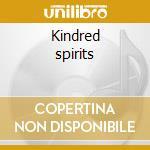 Kindred spirits cd musicale di Avram fefer/bobby fe