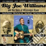 Same cd musicale di Big joe williams & s
