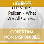 (LP VINILE) WHAT WE ALL COME TO NEED                  lp vinile di PELICAN