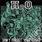Don't forget your roots cd musicale di H2o
