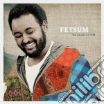 The colors of hope cd musicale di Fetsum