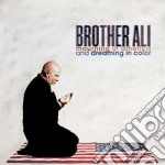 (LP VINILE) Mourning in america anddreaming in color lp vinile di Ali Brother
