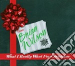 What i really want for christmas cd musicale di Brian Wilson