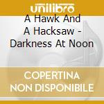 DARKNESS AT NOON cd musicale di A HAWK AND A HACKSAW