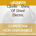 The Shine of Dried Electric Leaves cd musicale di CIBELLE