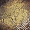 (LP VINILE) Passion - sources cd
