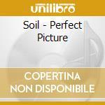 Soil - Perfect Picture cd musicale di SOIL