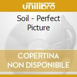 PERFECT PICTURE                           cd musicale di SOIL