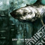 Shallow bed cd musicale di Dry the river