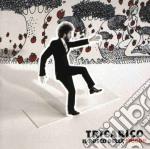 IL BOSCO DELLE FRAGOLE cd musicale di TRICARICO