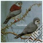 THIEVES cd musicale di SHEARWATER