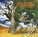 YOUNG TREE cd musicale di GROUNDATION