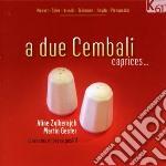A Due Cembali -  Brani Per Due Clavicembali O Per Clavicembalo E Organo Positivo cd musicale di Miscellanee