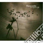 WINGED LIFE cd musicale di SHEARWATER