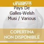 V/A - Pays De Galles-Welsh Musi cd musicale
