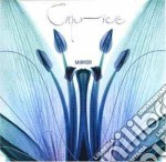 Caprice - Mirror cd musicale di CAPRICE