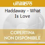 What is love cd musicale di Haddaway