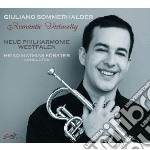 Romantic virtuosity cd musicale di Miscellanee