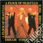 Dream come true cd musicale di A FLOCK OF SEAGULLS