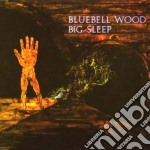 BLUEBELL WOOD cd musicale di Sleep Big
