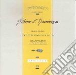 Reininger, Blaine - Instrumentals cd musicale di Blaine Reininger