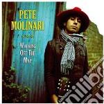 (LP VINILE) WALKING OFF THE MAP lp vinile di Pete Molinari