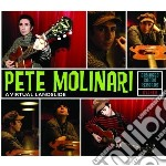 Pete Molinari - Virtual Landslide cd musicale di Pete Molinari