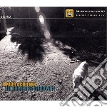 Junior Achiever - All The Little Letdowns cd musicale di Achiever Junior