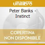 Peter Banks - Instinct cd musicale